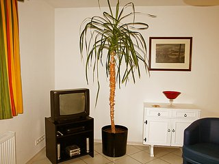 Sunny 1 bedroom House in Bad Neuenahr-Ahrweiler - Bad Neuenahr-Ahrweiler vacation rentals