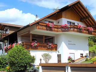 Sunny House with Internet Access and Television - Beerfelden vacation rentals