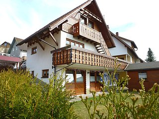 Romantic 1 bedroom House in Furtwangen - Furtwangen vacation rentals