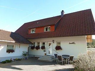 Sunny House with Television and Balcony in Bubenbach - Bubenbach vacation rentals