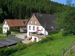 Romantic 1 bedroom House in Bubenbach - Bubenbach vacation rentals