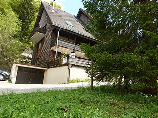 Sunny 2 bedroom House in Menzenschwand-Hinterdorf with Television - Menzenschwand-Hinterdorf vacation rentals
