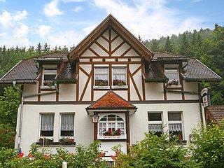 Cozy 3 bedroom House in Lausheim - Lausheim vacation rentals