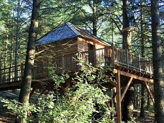 Cabane perchée dans une forêt de cèdre - Lastours vacation rentals