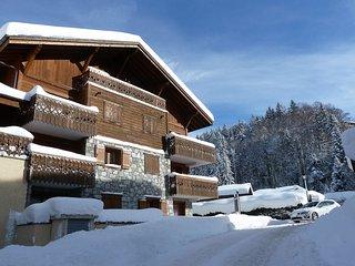 Les Cristallieres, A2, smart ski Apt. FREE wifi - Les Carroz-d'Araches vacation rentals