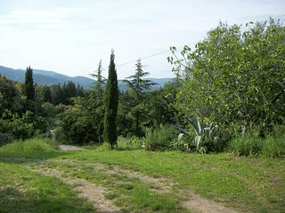 BELVEDERE DI SUVERETO Belvedere, Toscana, Italia - Suvereto vacation rentals