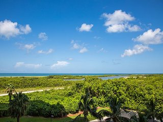 South Seas Tower 4 #501 - Marco Island vacation rentals