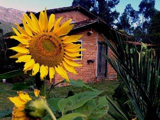 Casa na Chapada Diamantina Capão Caeteaçu - Vale do Capao vacation rentals