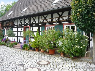 Nice House with Television and Microwave - Meissenheim vacation rentals