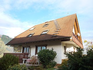 Sunny 1 bedroom House in Steinach - Steinach vacation rentals