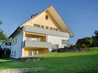 Lovely 3 bedroom House in Braunlingen with Television - Braunlingen vacation rentals