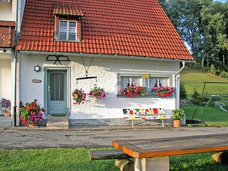 Nice Farmhouse Barn with Television and Washing Machine - Braunlingen vacation rentals