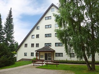 Nice 1 bedroom House in Unterkirnach - Unterkirnach vacation rentals