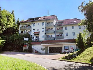 Beautiful 1 bedroom House in Todtnau - Todtnau vacation rentals
