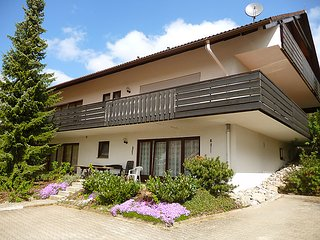 Sunny 1 bedroom Villa in Herrischried - Herrischried vacation rentals