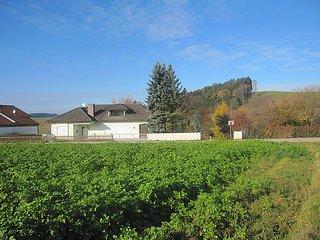 Landhaus im Klosterwinkel #4539 - Vilshofen vacation rentals