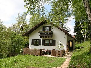 Sunny Sankt Englmar vacation House with Television - Sankt Englmar vacation rentals