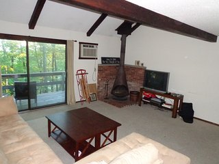 Great fall getaway or amazing winter skiing - Tannersville vacation rentals