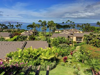 Beautiful 2 bedroom Condo in Wailea with Hot Tub - Wailea vacation rentals