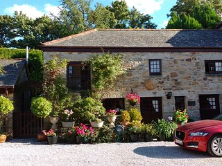 Mill Cottage  Water Mill near Perranwell Station - Perranwell Station vacation rentals