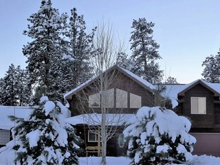 ForestView: Mountain solitude in a pet-friendly home with a large fenced yard - Pagosa Springs vacation rentals
