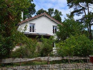 La  Rochetine ( forêt des 3 pignons ) - Noisy-sur-Ecole vacation rentals
