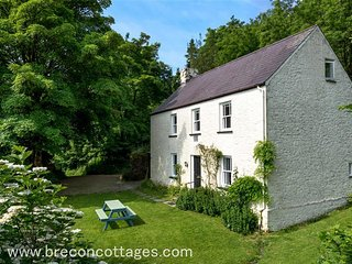 Lovely 4 bedroom Llandovery Cottage with Washing Machine - Llandovery vacation rentals