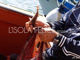 L'isola Felice Residence App. Levanzo 2 posti - Trapani vacation rentals