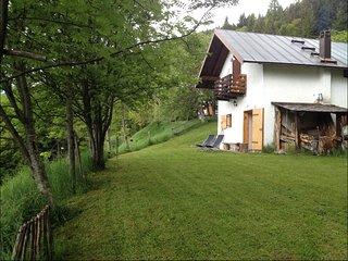 Grazioso appartamento in baita a Vetriolo Terme - Vetriolo Terme vacation rentals