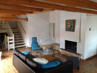 grand appartement avec terrasse de 45m2 - Fraize vacation rentals