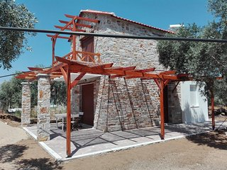new Stone house, in an olive groove, quite place, - Skala Prinou vacation rentals