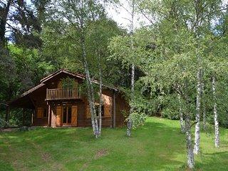 Chalet au coeur de la montagne Thiernoise - Thiers vacation rentals