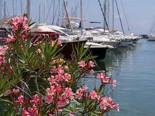 Port Azur - Golfe-Juan Vallauris vacation rentals