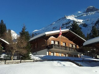 Ferienwohnung Chalet Bergblume Kandersteg - Kandersteg vacation rentals