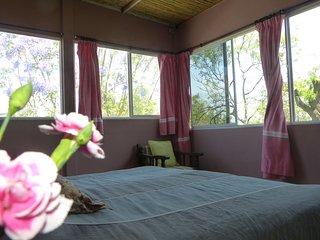 Nice 1 bedroom Condo in Oaxaca - Oaxaca vacation rentals
