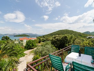 Apartments Sutvid- Two Bedroom Apartment with Balcony and Sea View - Drace vacation rentals