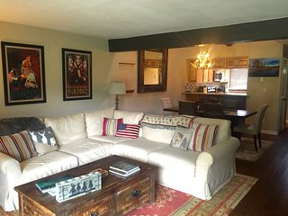2 bedroom Condo with Central Heating in Carbondale - Carbondale vacation rentals