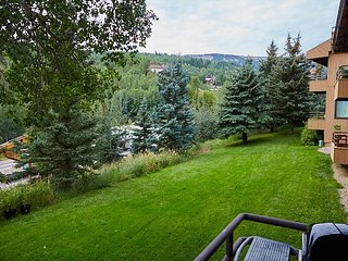 Renovated Condo in Snowmass Village - 10 Minute Walk to Slopes and Dining - Snowmass Village vacation rentals