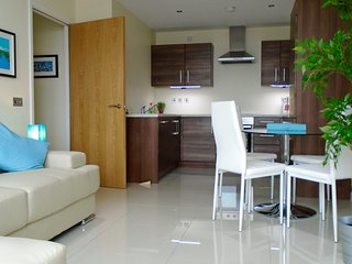 Belfast City centre Apartment Free Parking & Wifi - Belfast vacation rentals