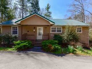 Nice House with Deck and Internet Access - Townsend vacation rentals