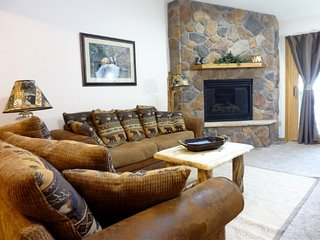 Nice Apartment with Deck and Microwave - Frisco vacation rentals