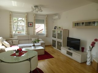 Apartment in center of Bihać - Bihac vacation rentals