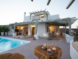 "Elegant and Luxurious Pool Villa (""WIld Theo"") - Ano Mera vacation rentals"