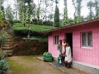 Sejour éco-solidaire dans les champs de thé - Gudalur vacation rentals