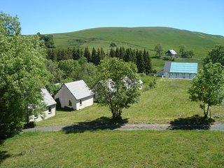 Gîte à 1200m, au cœur de la nature, piscine - Montgreleix vacation rentals