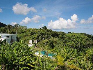 Modern Villa with Private Pool on Ishigaki Island - Ishigaki vacation rentals