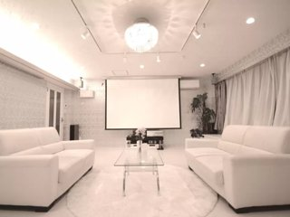 Perfect Luxury Housing for Special Occasions in Central Tokyo - Bunkyo vacation rentals