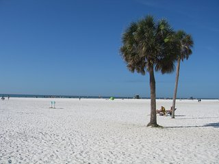 Gorgeous  3 bdrm 2 bath 5 mins from Siesta Beach - Sarasota vacation rentals
