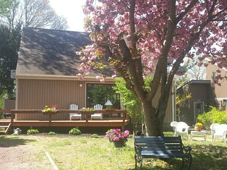 Adorable 3 bedroom House in Cape May Point with Deck - Cape May Point vacation rentals