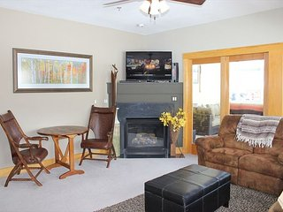 LR235- Charming 3 Bedroom 3 Bath Beautifully Furnished with Scenic Views - Dillon vacation rentals
